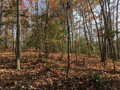 Murphy Residential Lots & Land For Sale: 1.6 Ac Riverstone Lane