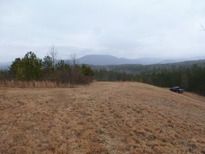 Murphy Residential Lots & Land For Sale: Lot 4 Little Easy