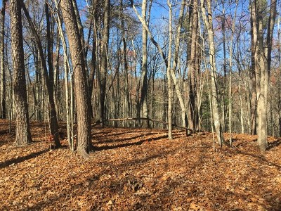 Murphy NC Residential Lots & Land For Sale: $59,000