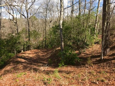 Brasstown Residential Lots & Land For Sale: The Overlook