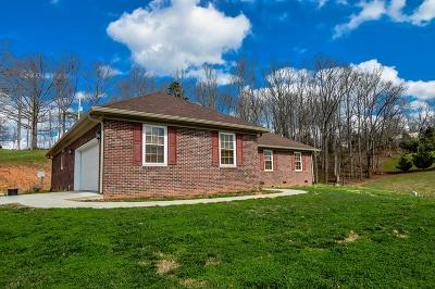 Young Harris Single Family Home For Sale: 794 St Hwy 66