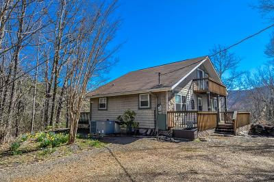 Hayesville Single Family Home For Sale: 289 Bethabara Road