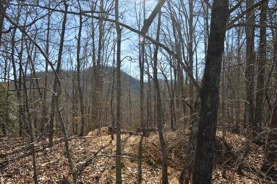 Hayesville Residential Lots & Land For Sale: Lot 115 Eagles View