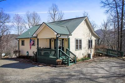 Hayesville Single Family Home For Sale: 4413 Hwy 64 East