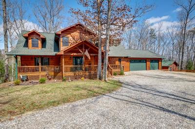 Murphy NC Single Family Home For Sale: $449,000