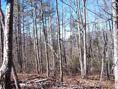 Hayesville Residential Lots & Land For Sale: 33.12 Hwy 64 East