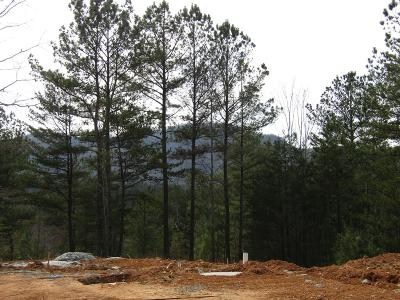 Murphy NC Single Family Home For Sale: $224,500