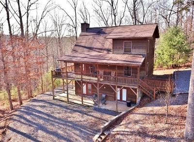 Murphy Single Family Home For Sale: 177 Carvers View Trail