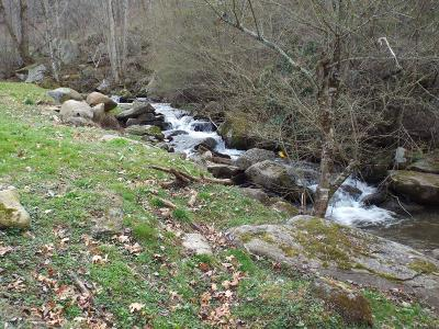 Robbinsville Residential Lots & Land For Sale: 1154 Beech Creek