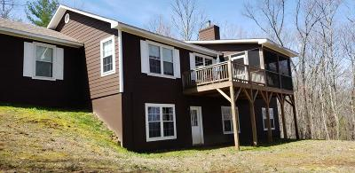 Andrews, Brasstown, Culberson, Hayesville, Marble, Murphy, Robbinsville, Topton Single Family Home For Sale: 605 Hamby Rd