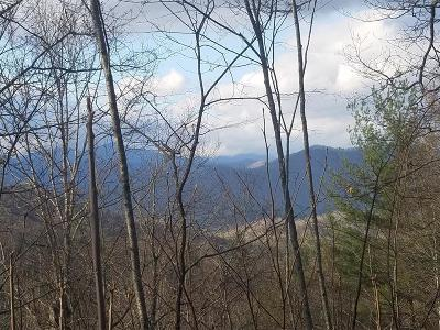 Robbinsville Residential Lots & Land For Sale: Sr 1241 Yellow Branch
