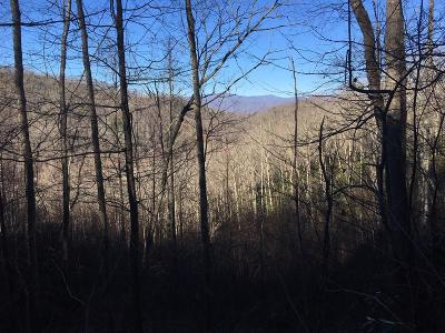 Robbinsville Residential Lots & Land For Sale: 00 Upper Sawyers Creek