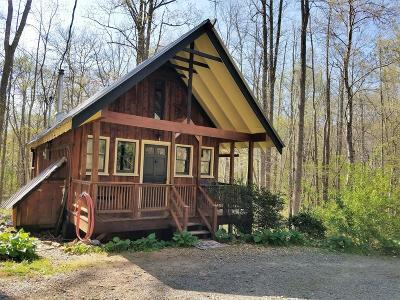 Brasstown Single Family Home For Sale: 452 Royal Oaks Trail