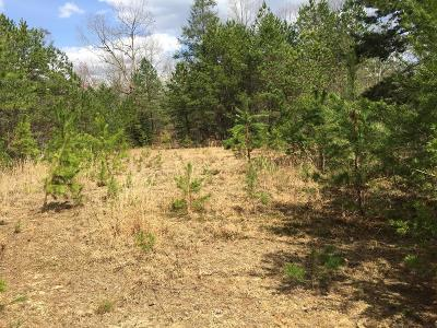 Murphy NC Residential Lots & Land For Sale: $150,000