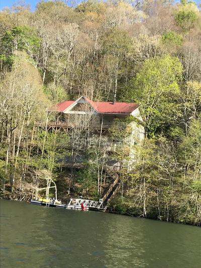 Topton Single Family Home For Sale: 1690 Lake Shore