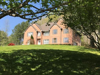 Murphy Single Family Home For Sale: 2045 Blairsville Highway