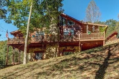 Murphy Single Family Home For Sale: 462 Lightning Bug Lane