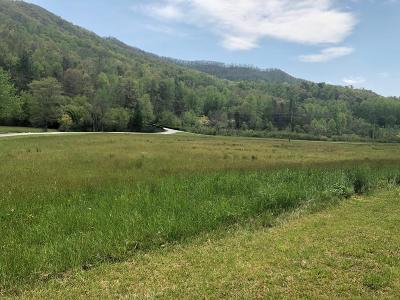 Robbinsville Residential Lots & Land For Sale: 00 Sweeten Creek Road