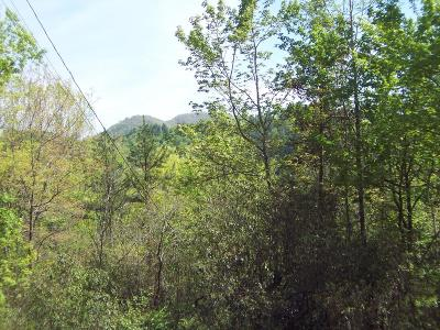 Marble Residential Lots & Land For Sale: #1 Long Branch Rd