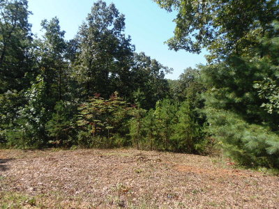 Murphy Residential Lots & Land For Sale: 46 Sierra Circle