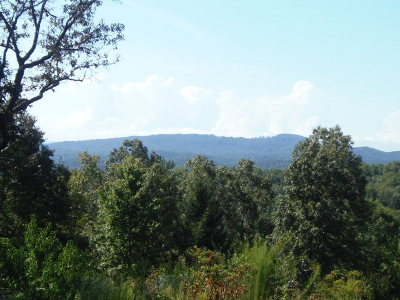 Murphy Residential Lots & Land For Sale: 7.20 Acr Sierra Circle