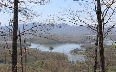 Hayesville Residential Lots & Land For Sale: 31b Mountain Harbour