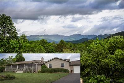 Hayesville Single Family Home For Sale: 147 Little Brook Drive