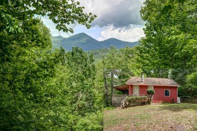 Murphy NC Single Family Home For Sale: $84,800