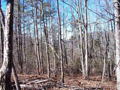 Hayesville Residential Lots & Land For Sale: 28.39 Hwy 64 East