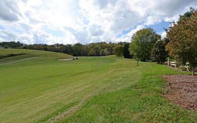 Hayesville Residential Lots & Land For Sale: 115-A Mountain Harbour Drive