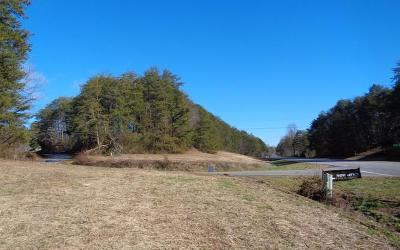 Hayesville Residential Lots & Land For Sale: 1.849 Hwy 64 E-Cold Branch