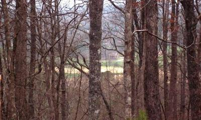 Young Harris Residential Lots & Land For Sale: Lot 65 Timberline Acres