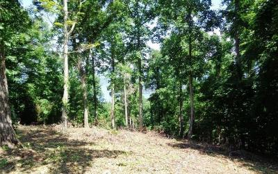 Hayesville Residential Lots & Land For Sale: Lot 77 Eagles View