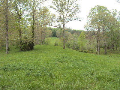 Murphy Residential Lots & Land For Sale: Lot 2 Tranquility Estates