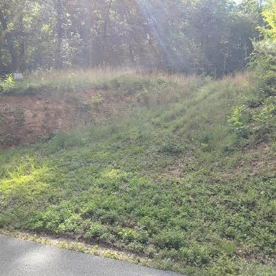 Murphy Residential Lots & Land For Sale: 00 Lonesome Pine Road