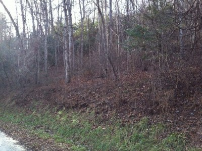 Topton Residential Lots & Land For Sale: Forest Vista Lane