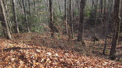 Topton Residential Lots & Land For Sale: Mountain Vista Lane
