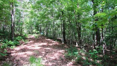Murphy Residential Lots & Land For Sale: 28 Appalachian Estates
