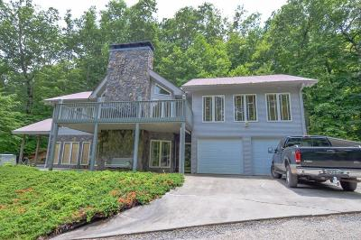 Suches Single Family Home For Sale: 361 Lunsford Road