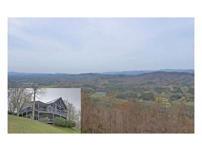 Murphy Single Family Home For Sale: 44010 Brasstown Heights