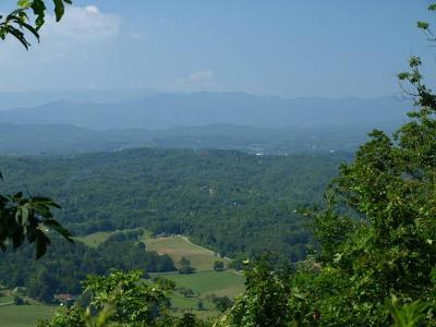 Brasstown Residential Lots & Land For Sale: Mason Way