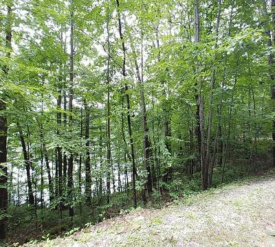 Topton Residential Lots & Land For Sale: Lot 41 Lake Shore