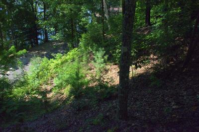 Robbinsville Residential Lots & Land For Sale: 00 Little Falls Trail