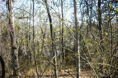 Hayesville Residential Lots & Land For Sale: Lot 4 Ridgeview Acres