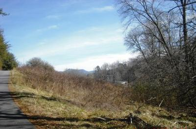 Hayesville Residential Lots & Land For Sale: Lot 14 Ridgeview Acres