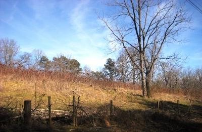 Hayesville Residential Lots & Land For Sale: Lot 3 Ridgeview Acres