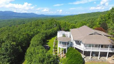 Andrews Single Family Home For Sale: 1976 Beaver Creek Road
