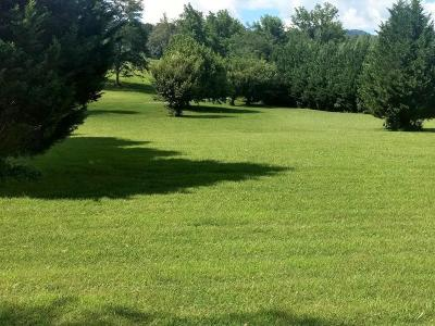 Hayesville Residential Lots & Land For Sale: 0000 Laurel Creek Lane
