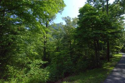 Robbinsville Residential Lots & Land For Sale: 00 Black Bear Trail