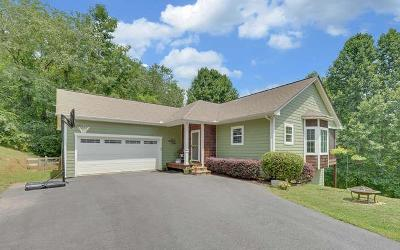 Hayesville Single Family Home For Sale: 142 Murray Hill Terrace
